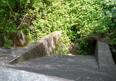 Offham Chalk Pits tunnel exits