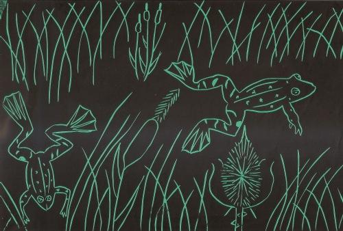 Theo da Costa (10) Marsh Frogs