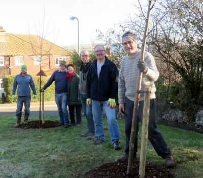 Tree planting in Nevill, Lewes