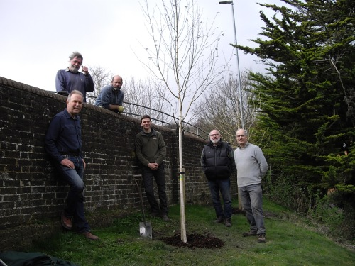 Friends of Lewes tree planters