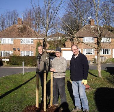 Valence Road Lewes tree planting
