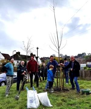 Tree planting at Cross Way, Nevill, Lewes