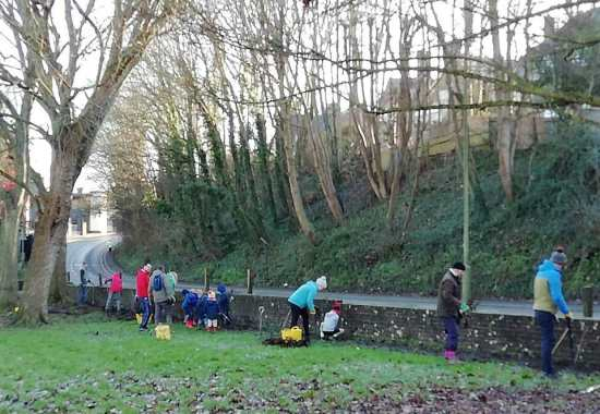 Friends of Lewes plant hedge at Bell Lane Recreation Ground, 2020